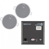 "In Wall Bluetooth module with two 2.5"" speakers"